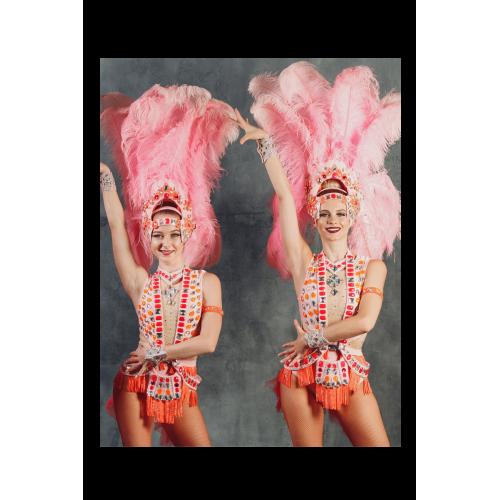 Spectacle de Carnaval de Rio - 1h30